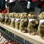 marmot-may2014-16