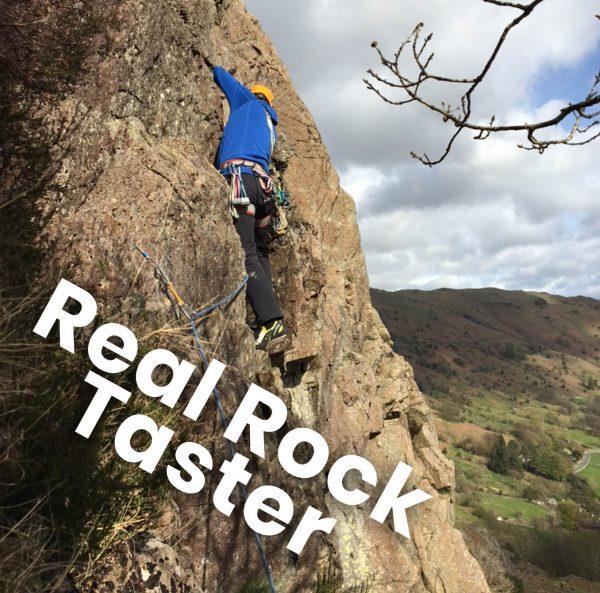 Real Rock Taster